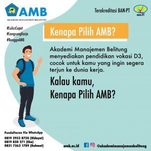 pmb amb 1