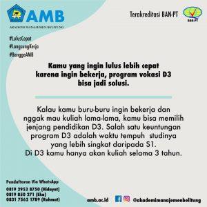 pmb amb 2