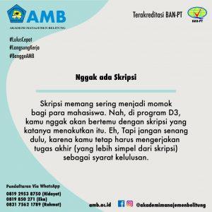 pmb amb 6