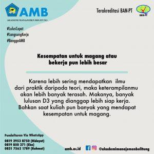 pmb amb 5