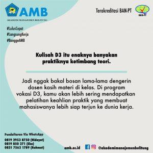 pmb amb 4